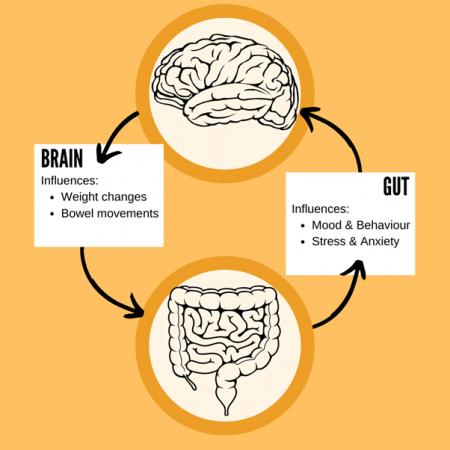 Mental Health & The Gut-Brain Axis, Figure 1